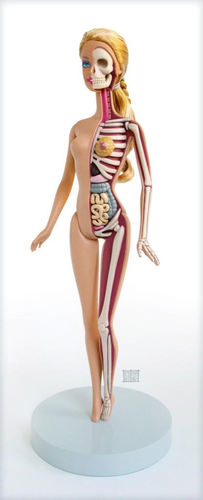 anatomical-barbie-1
