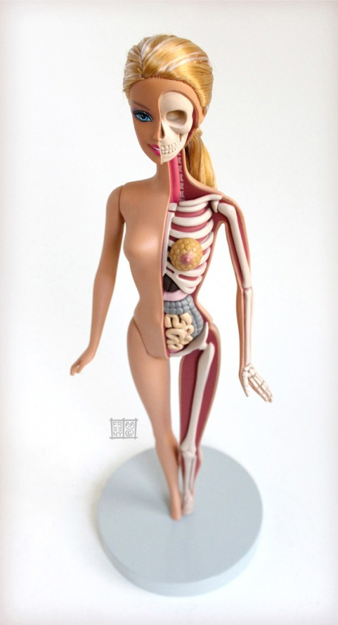 anatomical-barbie-2