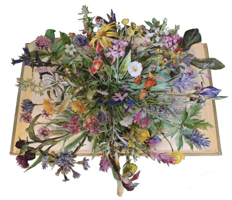 discarded-books-transformed-into-exploding-3d-collages-by-kerry-miller-2