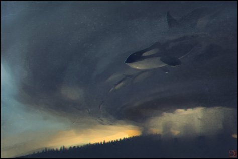 whales_killers_by_gaudibuendia-d7fnjbb