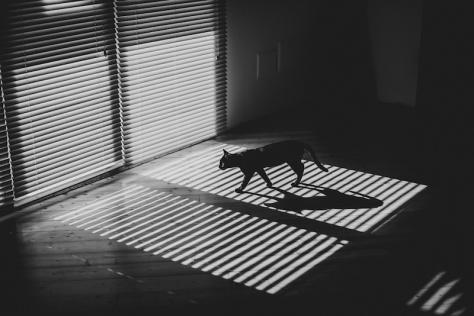 Alessio_Albi_Photography_15