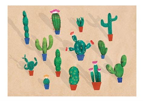 cactuslow-res480x339