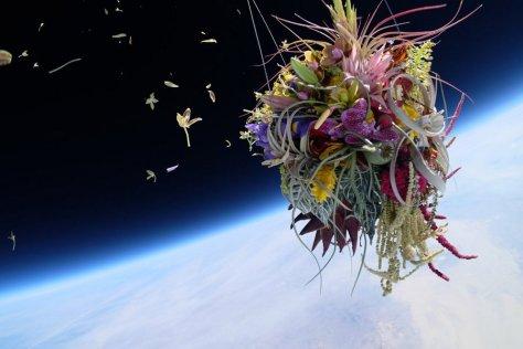 makoto-azuma-EXOBIOTANICA-BOTANICAL-SPACE-FLIGHT-3