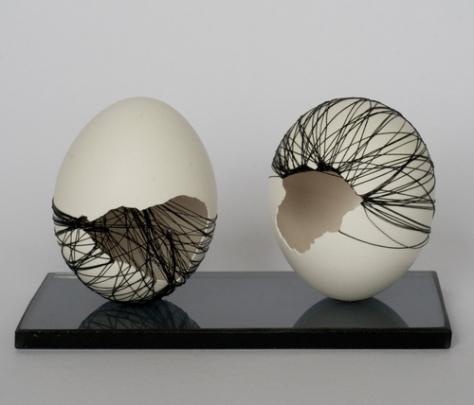 double eggblack