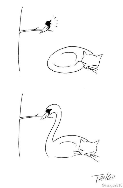 funny-minimal-illustrations-tango-14
